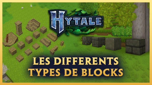 Vidéo Hytale - Les DIFFERENTS TYPES de BLOCKS